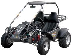 Hammerhead 200 GT Go Kart / Dune Buggy