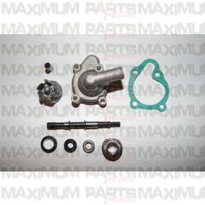 Water pump assy. CN / CF Moto 250 Full